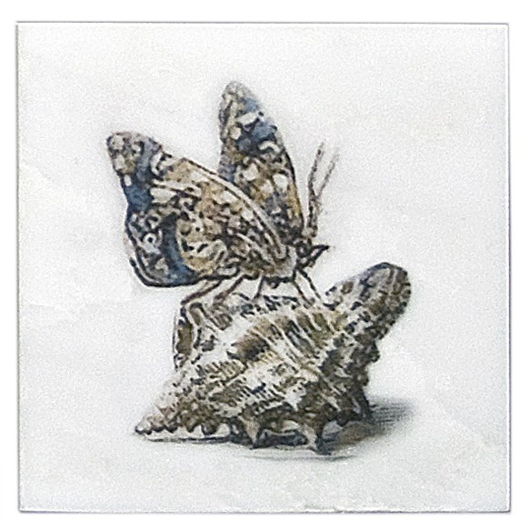 Carolina Summer Butterfly Accent