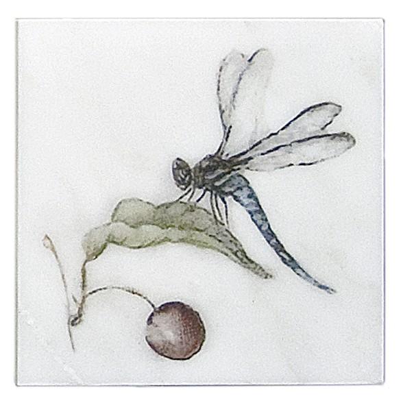Carolina Summer Dragonfly Accent