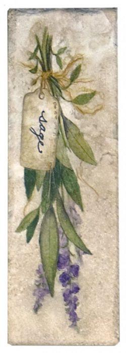 Herb Accent sage