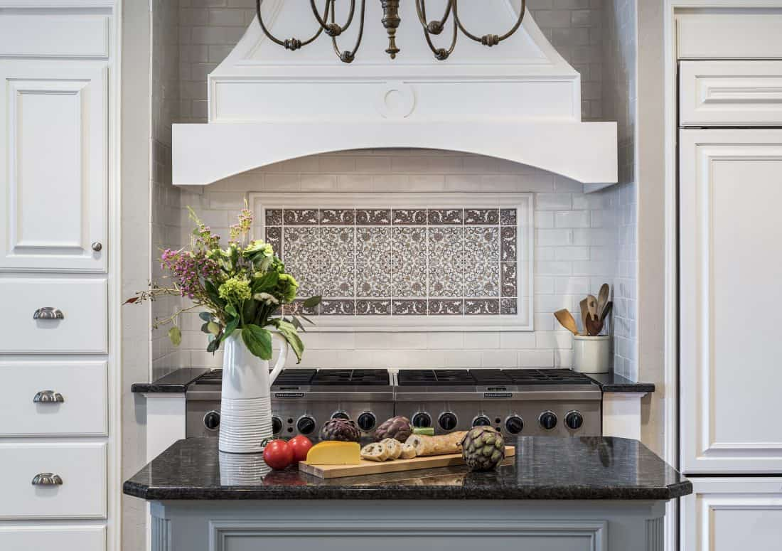 Marseille Serengeti Kitchen Backsplash