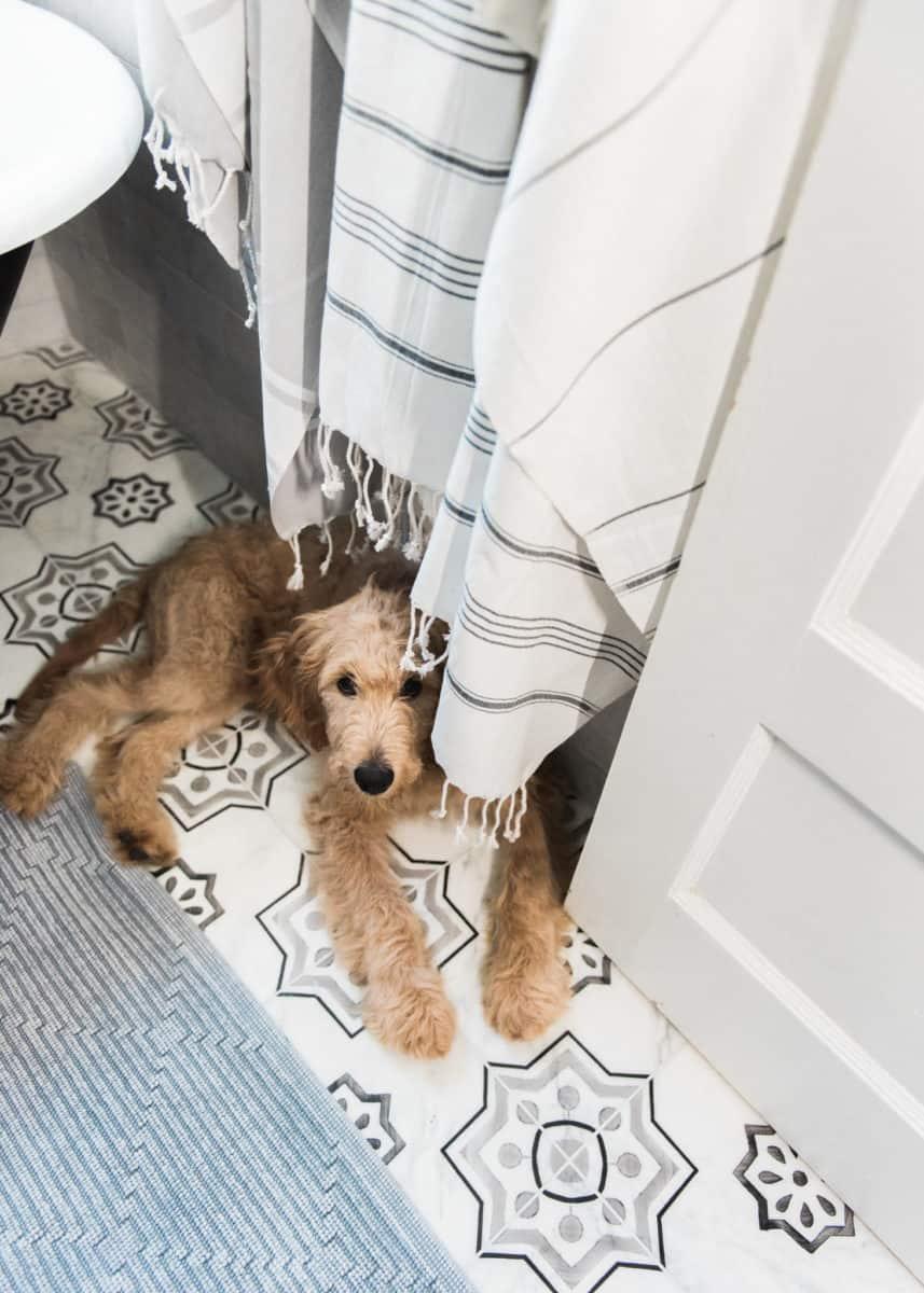Chapman in shade on carrara bathroom floor
